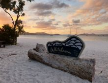 Whitsunday Island (2019)